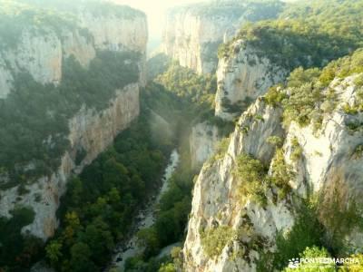 Selva Irati-Pirineo Navarro-Puente del Pilar; grazalema camino madroño patones